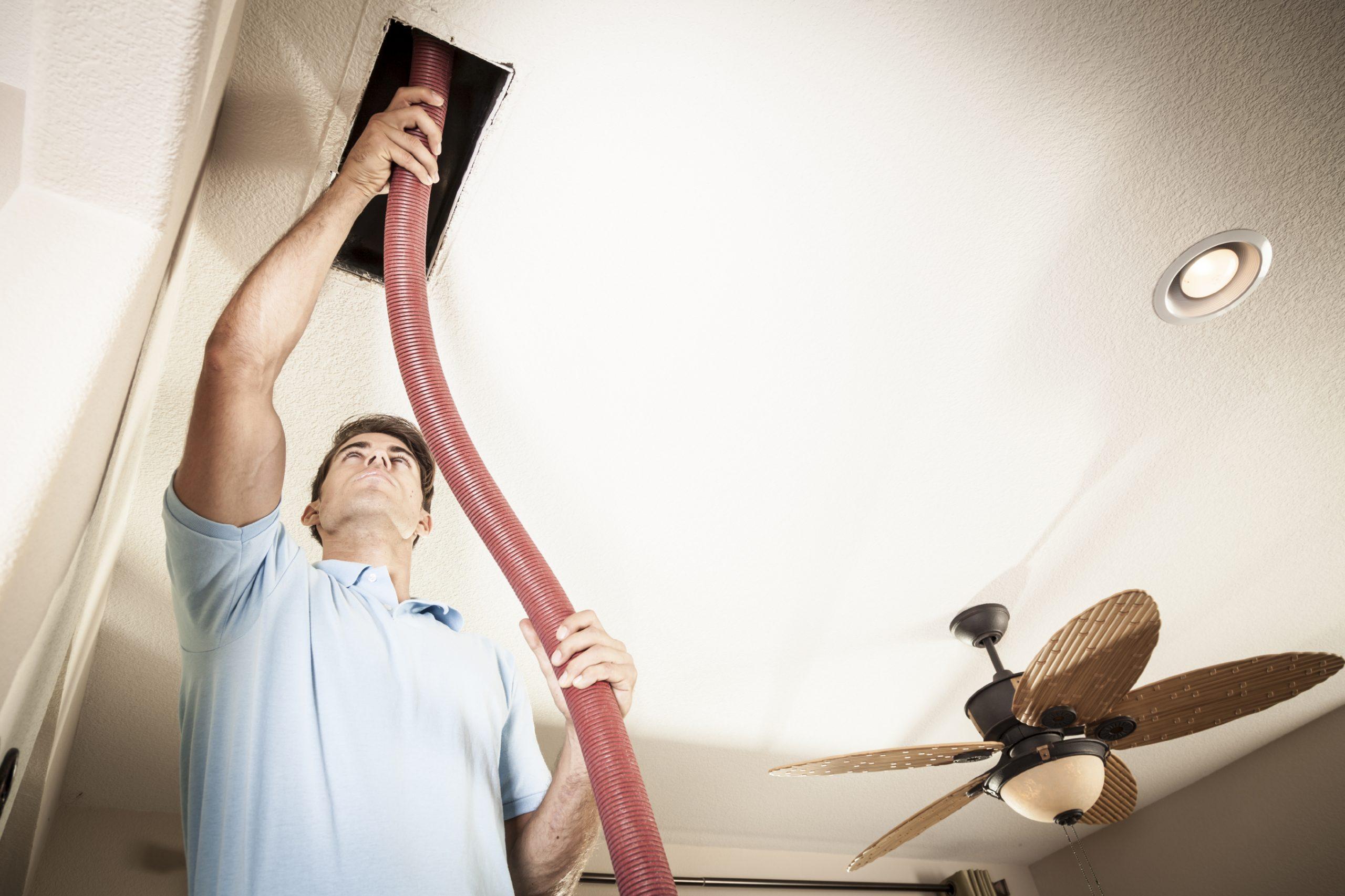 best carpet cleaners Austin