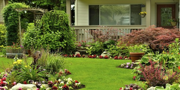 Landscaping Companies Near Me